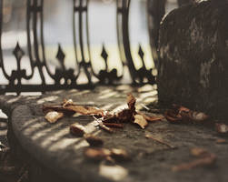 Elegy for October by Peterix