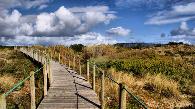 The Path by vmribeiro