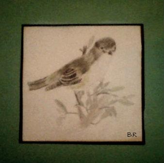 Bird by BellaR16