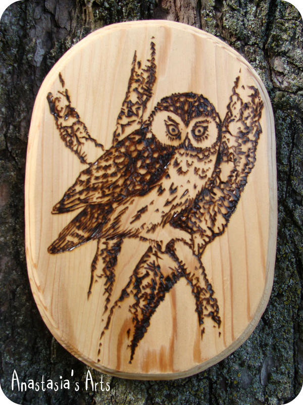 woodburning owl by anastasiasarts on deviantart