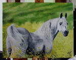 Horse Oil Painting by AnastasiasArts