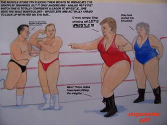HTRRC3-Inter-gender inter-generational tag match! by supreme006