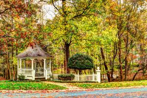 Fall 151108 by CarlMillerPhotos