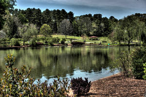 The Lake At Freedom Park by CarlMillerPhotos