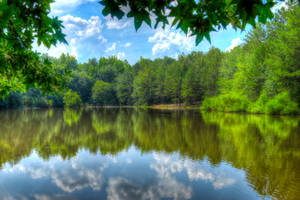The Lake at Idlewild Park by CarlMillerPhotos