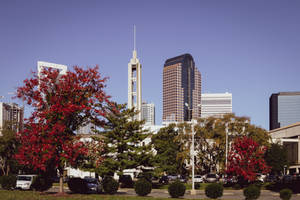 First Baptist Church - Charlotte NC