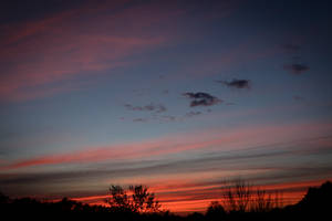 Sunset 190409 by CarlMillerPhotos