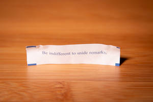 Fortune Cookie Wisdom - Snide Remarks