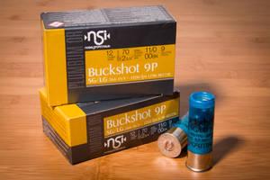 NSI Buckshot