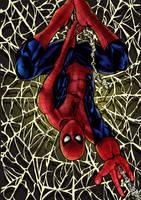 Spiderman by SandsGonzaga