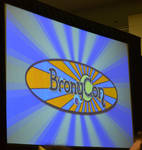 BronyCon 2013