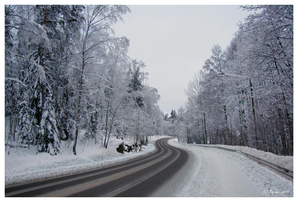 Winter Road by Pajunen