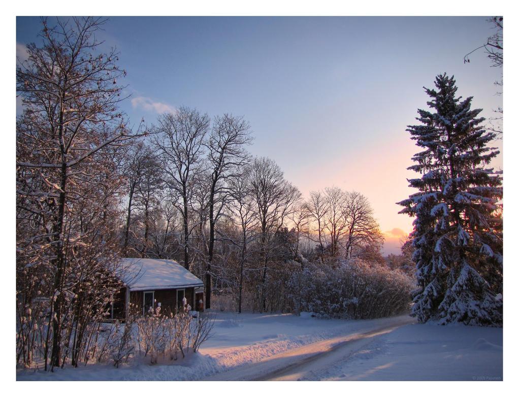 Winterway by Pajunen