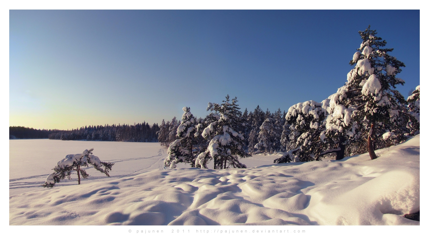 Cold and Sunny Winter Day by Pajunen