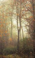 October Tree by Pajunen