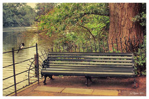 Hyde Park Bench by Pajunen
