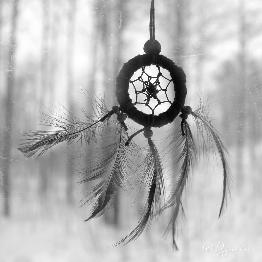 Winter Dreams by Pajunen