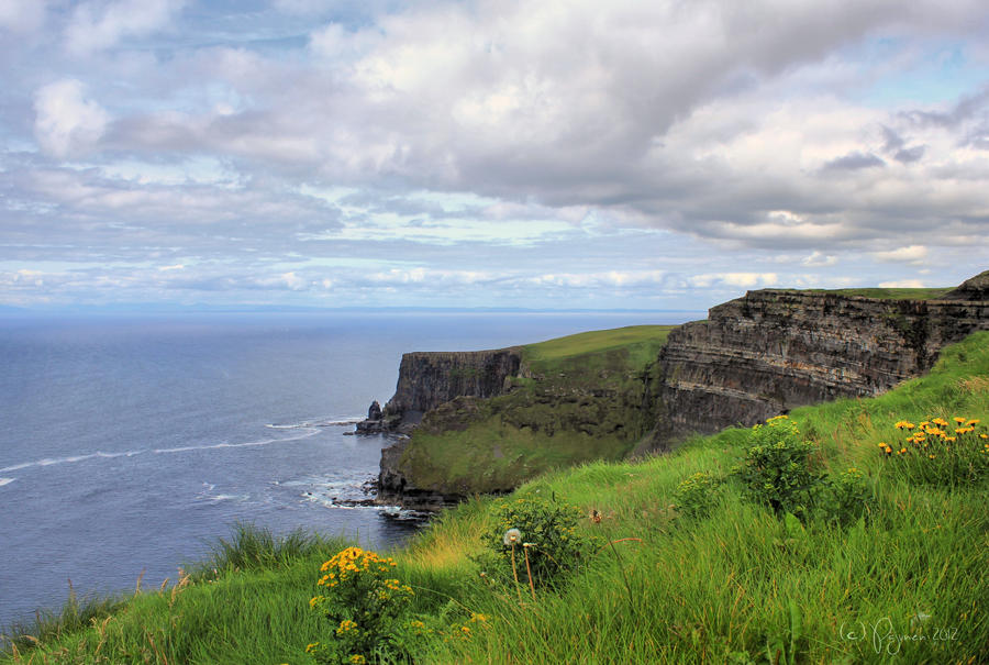 Back to Moher