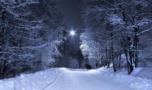 February Night