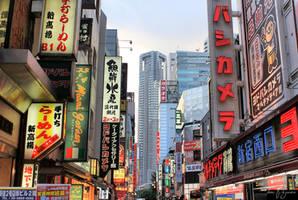 Tokyo 2013 by Pajunen