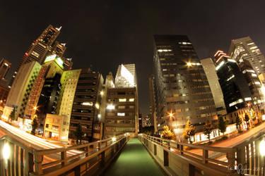 Night walk in Tokyo by Pajunen
