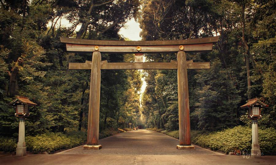 Meiji Shrine Torii by Pajunen
