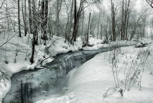 A brook in winter