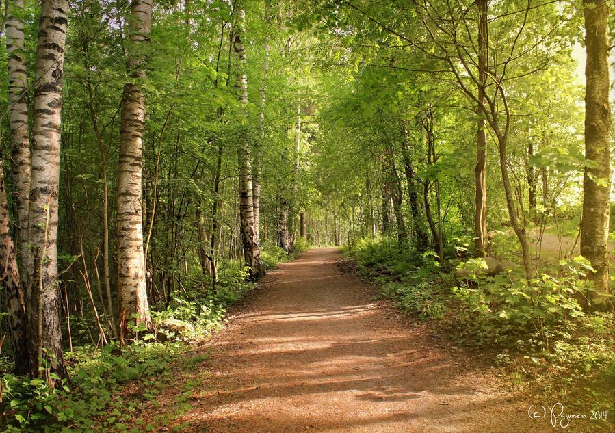Spring path by Pajunen
