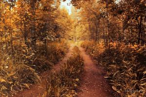Eternal Autumn by Pajunen