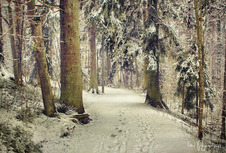I Walk Beside You by Pajunen