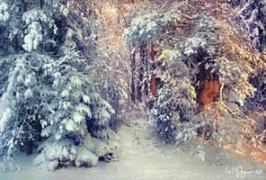 Winter's Tale by Pajunen
