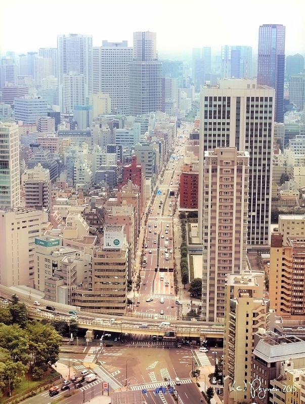 Tokyo Streets by Pajunen