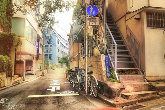 Tokyo Side Alleys
