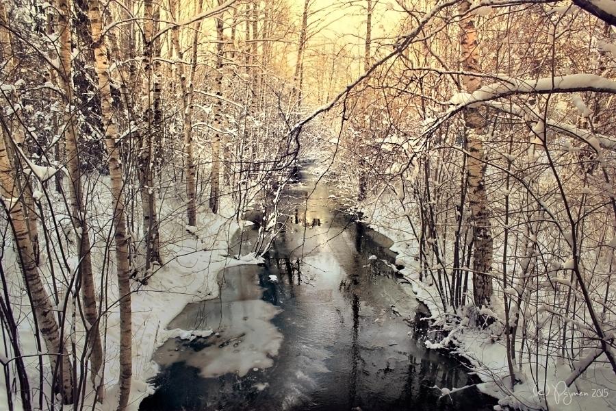 Black Water by Pajunen