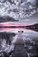 Solitude by Pajunen