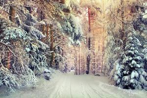 Winter Soul by Pajunen