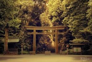 Shinto Gate by Pajunen
