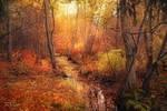 October Forest