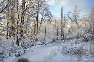 Frozen Brook by Pajunen