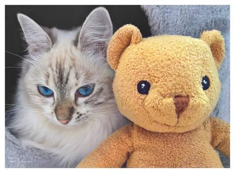 Maisa and her Teddy Bear