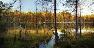 Autumn Forest Lake