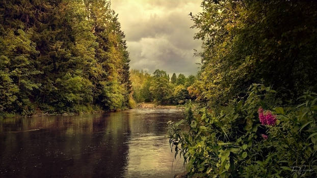 August River