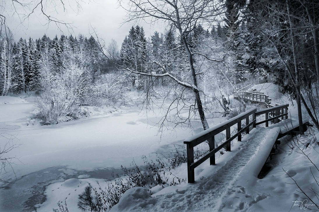 Along the frozen river by Pajunen