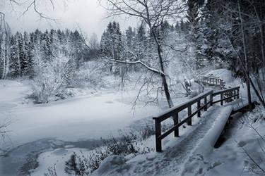 Along the frozen river by Pajunen