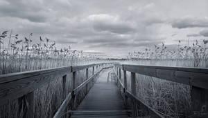 The Path III