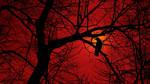Crow Tree Silhouette II