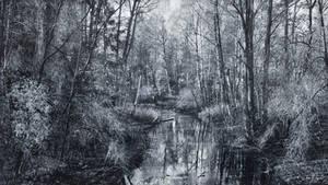 Monochrome River