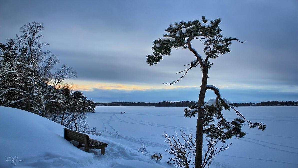Забавное, интересное, шокирующее - Страница 4 Winter_evening_by_pajunen-dbw7r21