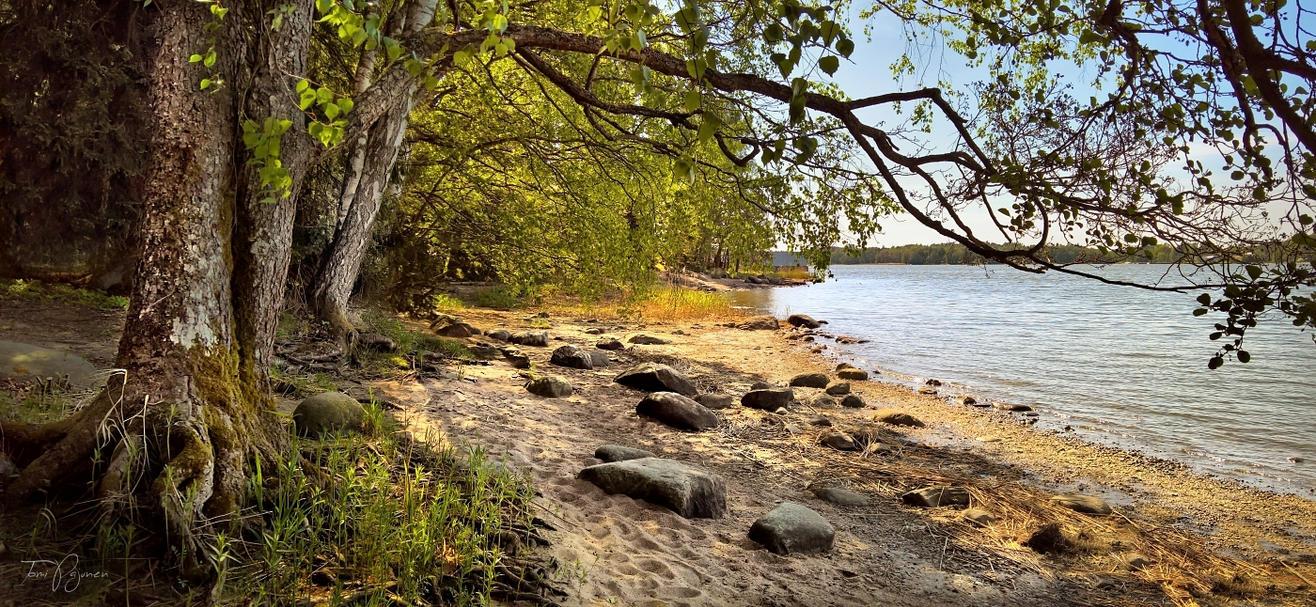 Seashore on May by Pajunen