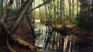 Waterway to frozen lake